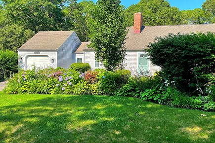 Osterville Cape Cod vacation rental - Blue skies, blanket of green lawn.