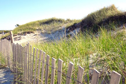 South Yarmouth Cape Cod vacation rental - Beach Dunes in Dennis lead to several Beaches.