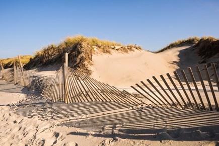 South Yarmouth Cape Cod vacation rental - More Sandy Beach Dunes in Dennis.
