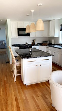 Dennis, Swan River Cape Cod vacation rental - Perfect space to cook while entertaining