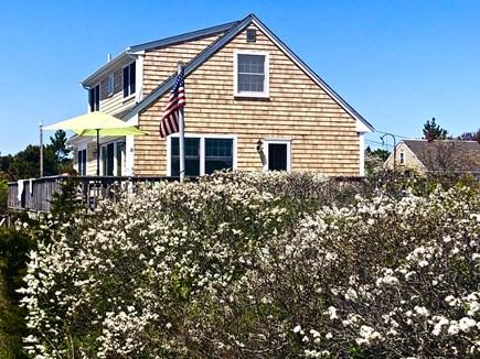 North Truro Cape Cod vacation rental - Cottage