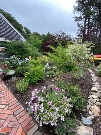Eastham Cape Cod vacation rental - Gardens are located all around the front of the home