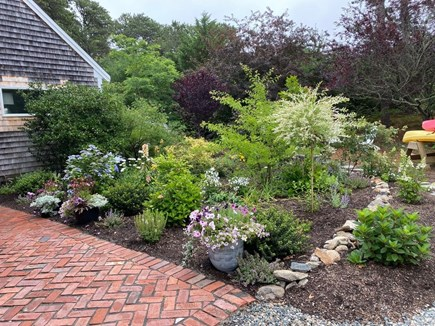 Eastham Cape Cod vacation rental - Front entrance garden