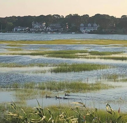 West Yarmouth Cape Cod vacation rental - View from cottage deck Mill Creek tidal salt water marsh