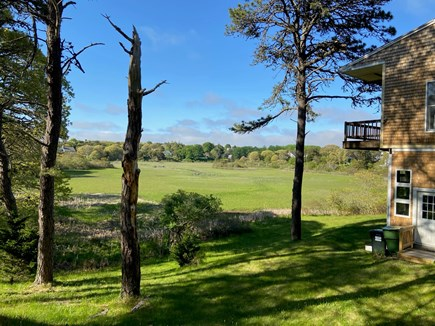 Chatham Cape Cod vacation rental - View of back yard and marsh from side of cottage