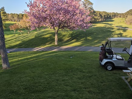 Harwich Cape Cod vacation rental - Cranberry Valley Golf Course nearby w/ advance call-in tee times