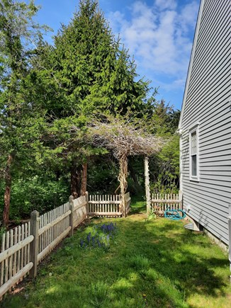 West Barnstable Cape Cod vacation rental - Side yard fenced in for furry friends to play.