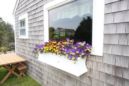 Chatham Cape Cod vacation rental - Flower Box