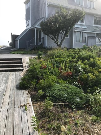 Plymouth MA vacation rental - From walkway