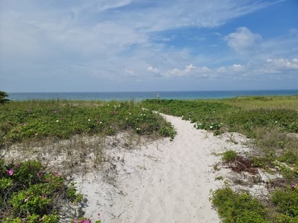 Falmouth, Bay Shore Cape Cod vacation rental - Another view of the pathway to the beach!