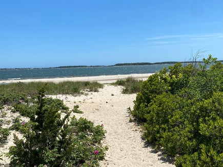 Yarmouth Cape Cod vacation rental - The path to the beach
