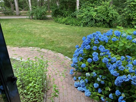 West Falmouth Cape Cod vacation rental - Easy walkway.