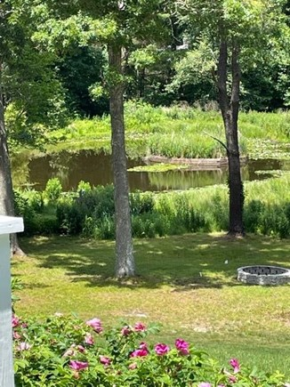 Osterville Cape Cod vacation rental - Pretty, serene pond view from deck and sun room