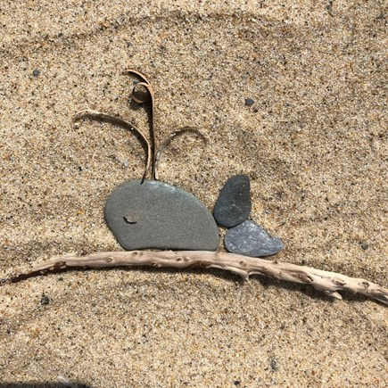 Eastham Cape Cod vacation rental - Beach art!