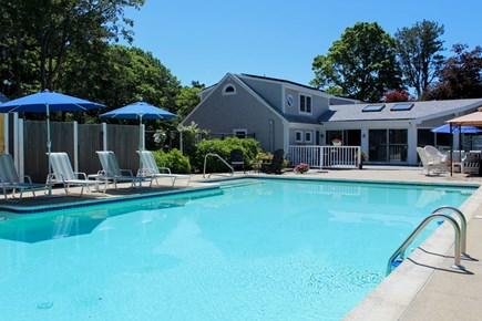 Brewster Cape Cod vacation rental - It's a big pool.