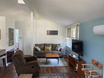 Falmouth Cape Cod vacation rental - Living room area that has a pull out couch.