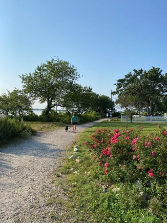 Falmouth Cape Cod vacation rental - Path along Great Pond steps outside your front door.