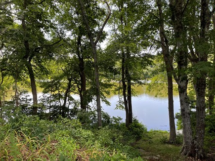 North Falmouth/Old SIlver Beac Cape Cod vacation rental - Pond on the Property