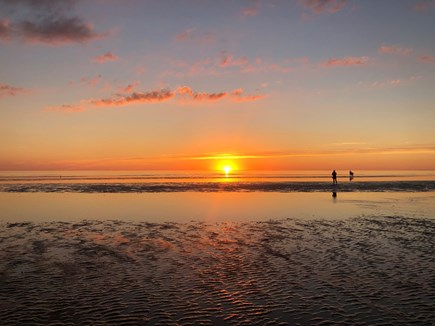 Eastham Cape Cod vacation rental - The amazing sunset at low tide from Campground Beach