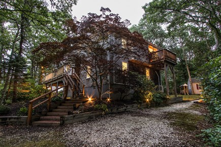 Harwich - Brewster Border / Ch Cape Cod vacation rental - A treehouse experience
