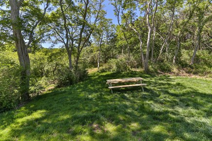 Truro Cape Cod vacation rental - Enjoy your breakfast, lunch and dinner outside in our meadow.