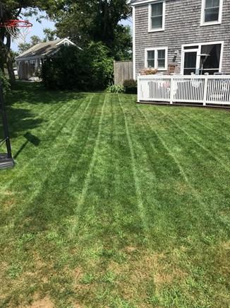 Dennis Cape Cod vacation rental - Back yard