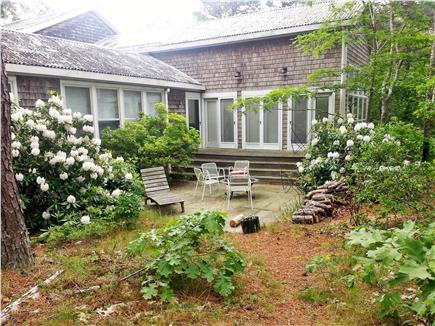 Wellfleet Cape Cod vacation rental - Patio area, greener in summer, with firepit.