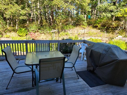 East Harwich Cape Cod vacation rental - Back Deck with Gas Grill & Great Spot for Bird Watching