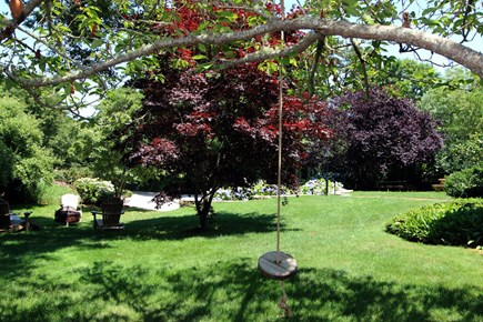 Brewster Cape Cod vacation rental - Spacious level yard where kids play safely