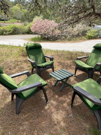 Wellfleet Cape Cod vacation rental - Sitting area under the pines on south side of the house