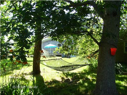 Dennis Port Cape Cod vacation rental - Hammock and back yard