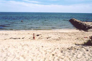 Dennis Port Cape Cod vacation rental - Depot Street Beach is a short walk away