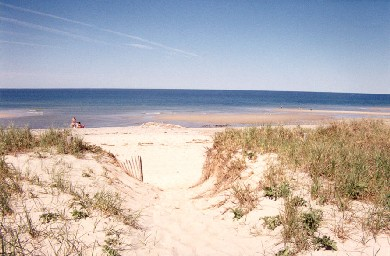 East Sandwich Cape Cod vacation rental - Short walk down to the sandy shores.