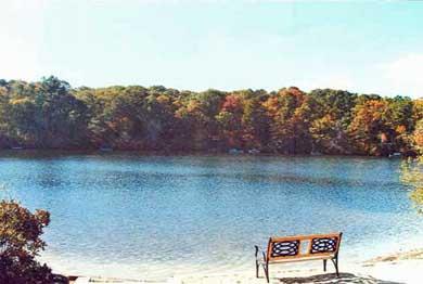 New Seabury New Seabury vacation rental - Swimming pond across the street