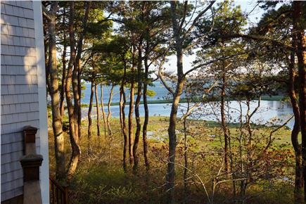 Cotuit Cotuit vacation rental - Enjoy bird watching and tidal ponds while barbecuing