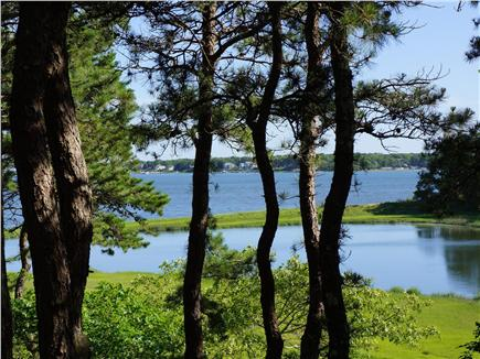 Cotuit Cotuit vacation rental - Stunning views of Popponesset Bay throughout the house