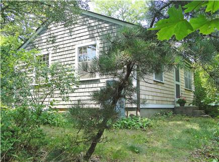 North Eastham Cape Cod vacation rental - Front yard wooded, back yard grassy