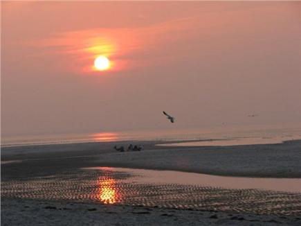 Dennis Cape Cod vacation rental - Beautiful Bayside Beach --  just down the road
