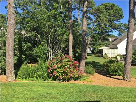 Brewster Cape Cod vacation rental - View of courtyard from private patio