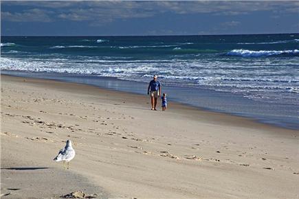 East Orleans Cape Cod vacation rental - Beautiful Nauset Beach