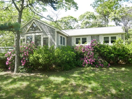 North Eastham - Bayside Cape Cod vacation rental - Beautiful shaded lot with sun on the back deck