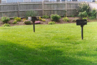 Dennis Port Cape Cod vacation rental - Relaxing back yard for grilling and picnicking