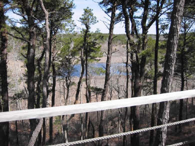 Truro Cape Cod vacation rental - Marsh overlook from the deck