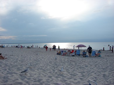 Dennis Cape Cod vacation rental - Spend the day at Mayflower Beach, great for sunset dinners