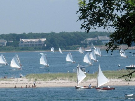 Cotuit Cotuit vacation rental - View of the Cotuit skiffs racing near Loop Beach