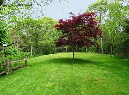 Chatham Cape Cod vacation rental - New landscaped back yard - great for outdoor games