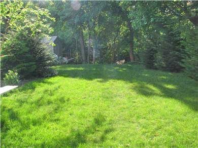 Centerville Centerville vacation rental - Back yard overlooks wooded area