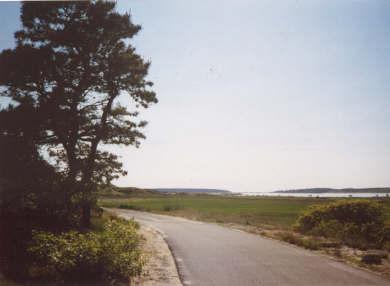 Wellfleet Cape Cod vacation rental - Road leading to beach