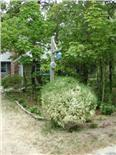 North Eastham Outer Cape Cod vacation rental