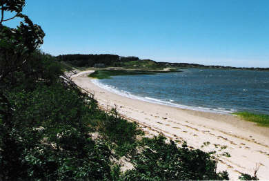 Wellfleet Harbor, on the Bluff Cape Cod vacation rental - Quiet sandy beach at low tide seen from upper deck